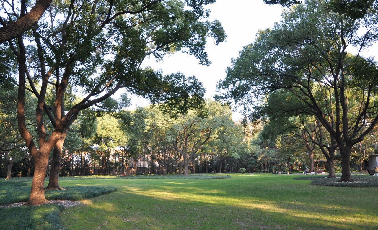 复兴岛公园内景
